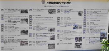 DSC_ゾウ飼育歴史