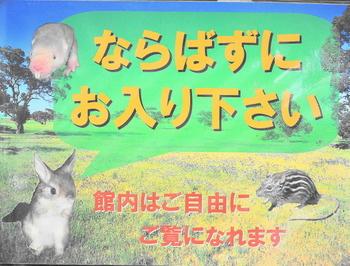 DSC_小獣館